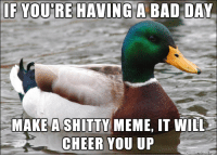 Advice, Bad, and Bad Day: IF YOU'RE HAVINGA BAD DAY  MAKE  A SHITTY  MEME, IT WILL  CHEER YOU UP <p>Actual Advice Mallard</p>