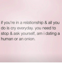 Dating, Memes, and Fuck: if you're in a relationship & all you  do is cry everyday. you need to  stop & ask yourself, am i dating a  human or an onion. Fuck him off. Make sure you follow @northwitch69 @northwitch69 @northwitch69 @northwitch69
