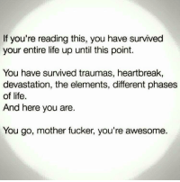 Life, Awesome, and Strong: If you're reading this, you have survived  your entire life up until this point.  You have survived traumas, heartbreak,  devastation, the elements, different phases  of life.  And here you are.  You go, mother fucker, you're awesome. <p>Stay Strong</p>