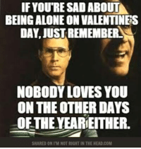 Feel better now?: IF YOURE SAD ABOUT  BEING ALONEON VALENTINES  DAY, JUSTREMEMBERLA  NOBODY LOVES YOU  ON THE OTHER DAYS  OFTHE YEARIEITHER.  SHARED ON I M NOT RIGHT IN THE HEAD.COM Feel better now?