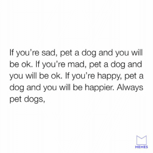 Dank, Dogs, and Memes: If you're sad, pet a dog and you will  be ok. If you're mad, pet a dog and  you will be ok. If you're happy, pet a  dog and you will be happier. Always  pet dogs,  MEMES Gvie them the pets.