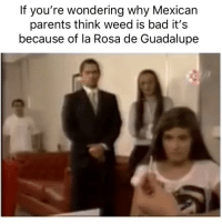 Bad, Bruh, and Parents: If you're wondering why Mexican  parents think weed is bad it's  because of la Rosa de Guadalupe Bruh 😂