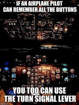 Airplane, Com, and Can: IFAN AIRPLANE PILOT  CAN REMEMBER ALLTHE BUTTONS  YOU TOO CAN USE  THE TURN SIGNAL LEVER  ingflip.com