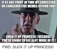 Memes, Princess, and Conservative: IFAT ANY POINTINTIME MY CHRISTIAN  OR CONSERVATIVE MEMES OFFENDYOU  SUCKIT UP PRINCESS!BECAUSE  YOURE GOING TO SEEALOT MORE OFIT  FWD: SUCK IT UP PRINCESS!