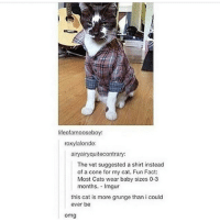 Tumblr, Dog, and Cat: ifeofamooseboy:  roxy lalonde:  ainyairyquitecontrary:  The vet suggested a shirt instead  of a cone for my cat. Fun Fact:  Most Cats wear baby sizes 0-3  months. Imgur  this cat is more grunge than i could  ever be  omg My 9 year old cousin and sister are pretending to be puppies together. They even gave their characters back stories. That's so adorable, right? Well, my cousin just told me that her dog's backstory is she doesn't like humans because she once trusted a human, but then they walked into her cage and stepped on her baby and killed it. If there were ever a dog version of Orange is the New Black...