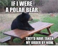 IFI WERE  A POLAR BEAR  THEY D HAVE TAKEN  MY ORDER BY NOW. Black Lives Matter.