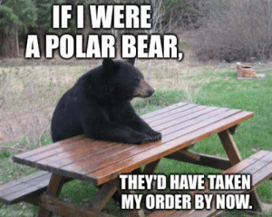 Taken, Tumblr, and Bear: IFI WERE  A POLAR BEAR  THEY'D HAVE TAKEN  MY ORDER BY NOW. srsfunny:Pretty Unbearable