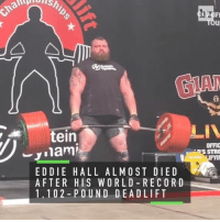 Sports, 10 2, and Nami: IFN  LIV  tein  OFFIC  nami  J. S STRO  EDDIE HALL ALMOST DIE D  AFTER HIS WORLD RECORD  1, 10 2 P OUND DE A D LIFT Despite nearly dying during his world-record deadlift, UK's strongest man @eddie_hall_strong is just getting started 💪