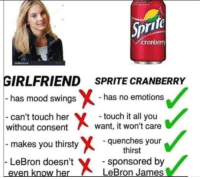 """LeBron James, Memes, and Mood: ifo  cranberr  GIRLFRIEND SPRITE CRANBERRY  has mood swings  has no emotions  can't touch her  without consent  touch it all you  want, it won't care  makes you thirstyquenches y  LeBron doesn't  even know her  thirst  sponsored by  LeBron James <p>The better option. via /r/memes <a href=""""http://ift.tt/2Bk8BUJ"""">http://ift.tt/2Bk8BUJ</a></p>"""