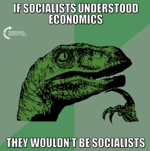 Fair Point... #SocialismSucks: IFSOCIALISTS UNDERSTOOD  ECONOMICS  TURNING  POINT USA  1  THEY WOULDN'T BE SOCIALISTS Fair Point... #SocialismSucks