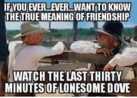 Country cutie: IFYOUEVERLEVER WANT TO KNOW  THETRUEMEANINGTOFFRIENDSHIP  WATCH THE LAST THIRTY  MINUTES OF LONESOME DOVE Country cutie