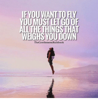 Memes, Wings, and Tag Someone: IFYOUWANT TO FLY  YOUMUST LET GOOF  ALL THETHINGS THA  WEIGHS YOU DOWN  TheGentlemensRulebook Learn to let go and spread your wings. LIKE & TAG SOMEONE WHO NEEDS THIS!