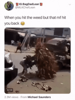 Shit, Weed, and Michael: IG:BagDadLean  @MLKChefLean  When you hit the weed but that mf hit  you back  758  0:13  2.3M views From Michael Saunders And you thought the edibles weren't doing shit