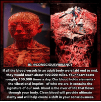 """Anaconda, Life, and Memes: IG: @CONSCIOUSVIBRANCY  If all the blood vessels in an adult body were laid end to end,  they would reach about 100,000 miles. Your heart beats  roughly 100,000 times a day. Our blood holds elements  the vibrational imprint of who we are. It contains the  signature of our soul. Blood is the river of life that flows  through your body. Clean blood will provide ultimate  clarity and will help create a shift in your consciousness. Peering into the microscope and looking at live blood, you can see a reflection of cause and effect. When you're not feeling well, your blood doesn't look good. Often, the worse you feel, the worse it looks. When you get better, the blood also gets looking better. Simple correlation. Make the blood look better, you'll feel better. Clean the blood, clean your health. But something else is going on. When you feel better, often your attitude is also better. Your state of mental health is closely aligned with your state of physical health. Change physical health, and you'll often impact mental health. The reverse also holds; change the mental, and you'll change the physical. Where is it often reflected? In the blood. The state of your individual health is spiritually-vibrationally induced, chemically-electrically driven, and biologically carried out. The biological aspect is the pleomorphic behavior of """"the wiggly things"""" in the blood. These are the microbial looking elemental forms that exist in your blood and will shape themselves according to your metabolic balance. Their forms, and ultimately their function, are going to be driven and decided by the environment in which they live, and which you have provided through your eating, thinking, and living. The keys to who you are, what you are and where you are going have been hidden away from you within your very own blood all along. When we master ourselves both physically and mentally, we can then become master's of our own universe in order to live loving lives that a"""
