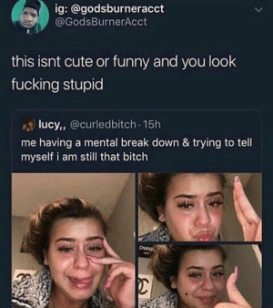 People need to stop posting this kind of shit: ig: @godsburneracct  @GodsBurnerAcct  this isnt cute or funny and you look  fucking stupid  lucy, Ocurledbitch 15h  me having a mental break down & trying to tell  myself i am still that bitch  CHANIL People need to stop posting this kind of shit