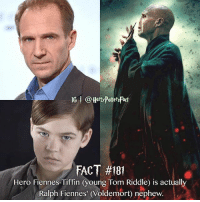 """Memes, Riddle, and Coincidence: IG @Hard PotetsFact  FACT #181  Hero Fiennes-Tiffin (young Tom Riddle) is actually  Ralph Fiennes' (Voldemort) nephew. """"Coincidence?............."""" (Finish sentence)"""