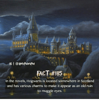Memes, Scotland, and Old: IG | @Herd'PottetsFact  In the novels, Hogwarts is located somewhere in Scotland  and has various charms to make it appear as an old ruin  to muggle eyes. Comment 'Hogwarts' letter by letter without getting interrupted! - Also congrats to our contest winner @sophia.t.705