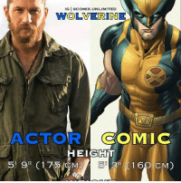 From @comix.unlimited - Tom Hardy = Wolverine: IG I COMIX TED  WOLVERINE  ACTOR  COMIC  HEIGHT  519 C 175 CMD  33 C 1 60 CM) From @comix.unlimited - Tom Hardy = Wolverine