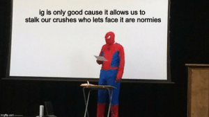 Good, Com, and Who: ig is only good cause it allows us to  stalk our crushes who lets face it are normies  imgflip.com admit it