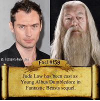 What are your thoughts?: IG l@HarryPotter  Fact #159  Jude Law has been cast as  Young Albus Dumbledore in  Fantastic Beasts sequel What are your thoughts?
