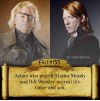 Bill Weasley (Domhnall Gleeson) was the one who announced Mad Eye Moody (Brendan Gleeson) died after getting Harry safely to the Weasley house in the Deathly Hallows Part 1.: IG l@Horty Pottersfact  Fact#155  Actors who played Alastor Moody  and Bill Weasley are real life  father and son. Bill Weasley (Domhnall Gleeson) was the one who announced Mad Eye Moody (Brendan Gleeson) died after getting Harry safely to the Weasley house in the Deathly Hallows Part 1.