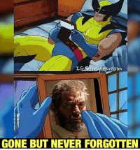 Memes, 🤖, and Realm: IG.Otheaeek realm  GONE BUT NEVER FORGOTTEN Who else saw Logan this weekend? I miss @thehughjackman already... ☹️ (Not a spoiler! I'm referring to his role as Wolverine, guys!) Repost from @thegeekrealm.