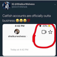 Catfished, Business, and Today: IG:@SheikurWolvess  @iAmTrillSheik  Catfish accounts are officially outta  business  4:42 PM  О  43%.  00 A  sheikurwolvess  Today at 4:42 PM It's over 😂 https://t.co/zTB1mlynOt
