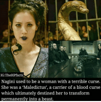 Wow!! Did you know this?Credits:@thehpfacts: IG:TheHPfacts  Nagini used to be a woman with a terrible curse.  She was a 'Maledictus', a carrier of a blood curse  which ultimately destined her to transform  permanently into a beast. Wow!! Did you know this?Credits:@thehpfacts