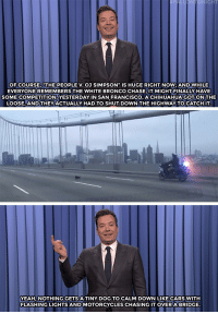 """Cars, Chihuahua, and Jimmy Fallon: IGH  OF COURSE, THE PEOPLE V.OJ SIMPSON IS HUGE RIGHT NOW AND WHILE  EVERYONE REMEMBERS THE WHITE BRONCO CHASE, IT MIGHT FINALLY HAVE  SOME COMPETITION YESTERDAY IN SAN FRANCISCO, A CHIHUAHUA GOT ON THE  LOOSE, ANDTHEYACTUALLY HAD TO SHUT DOWN THE HIGHWAY TO CATCH IT  YEAH,NOTHING GETS A TINY DOG TO CALM DOWN LIKE CARS WITH  FLASHING LIGHTS AND MOTORCYCLES CHASING IT OVER A BRIDGE <p><b>- <a href=""""http://www.nbc.com/the-tonight-show/video/donald-trumps-debt-plan-blue-origin-rocket-test-flight-monologue/3013596"""" target=""""_blank"""">Jimmy Fallon's Monologue; April 4, 2016</a></b></p>"""