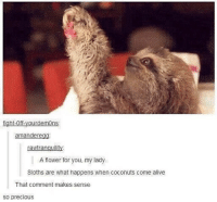 Alive, Funny, and Lol: ight-0  demon  ama  ere  rawtranquility:  A flower for you, my lady.  Sloths are what happens when coconuts come alive  That comment makes sense  so precious @weirdfandomaccount Look, Stanley is giving you a flower. -Maddie🦉 funny cleanfunny humor cleanhumor comedy cleancomedy memes meme cleanmemes funnymemes lol cleanlol haha cleanhaha rofl cleanrofl noswearing cleanaccount 😂 😂😂