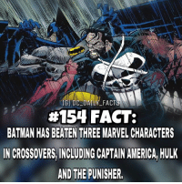 America, Batman, and Facts: IGI DC DAILY FACT  #154 FACT:  BATMAN HAS BEATEN THREE MARVEL CHARACTERS  N CROSSOVERS INCLUDING CAPTAIN AMERICA HULK  AND THE PUNISHER. By @dc_daily_facts dc dccomics dceu dcu dcrebirth dcnation dcextendeduniverse batman superman manofsteel thedarkknight wonderwoman justiceleague cyborg aquaman martianmanhunter greenlantern theflash greenarrow suicidesquad thejoker harleyquinn comics injusticegodsamongus