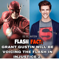 Memes, The Flash, and Batman Superman: IGI DC NATION  FLASH  FACT  GRANT GUSTIN WILL BE  VOICING THE FLASH IN  INJUSTICE 2 What character are you most excited for in injustice 2? dc dccomics dceu dcu dcrebirth dcnation dcextendeduniverse batman superman manofsteel thedarkknight wonderwoman justiceleague cyborg aquaman martianmanhunter greenlantern theflash greenarrow suicidesquad thejoker harleyquinn comics injusticegodsamongus