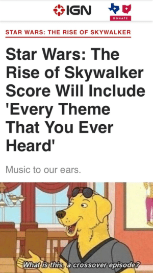 No score is every really gone: IGN  DONATE  STAR WARS: THE RISE OF SKYWALKER  Star Wars: The  Rise of Skywalker  Score Will Include  'Every Theme  That You Ever  Heard'  Music to our ears.  What is this, a crossover episode? No score is every really gone