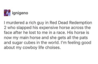 Wholesome Cowboy: ignigeno  I murdered a rich guy in Red Dead Redemption  2 who slapped his expensive horse across the  face after he lost to me in a race. His horse is  now my main horse and she gets all the pats  and sugar cubes in the world. I'm feeling good  about my cowboy life choises. Wholesome Cowboy
