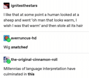 Hair, Snatched, and Human: ignitesthestars  I like that at some point a human looked at a  sheep and went 'oh man that looks warm, I  wish I was that warm' and then stole all its hair  averruncus-hd  Wig snatched  the-original-cinnamon-roll  Millennias of language interpretation have  culminated in this