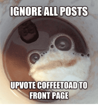 Funny, Coffee, and Page: IGNORE ALL POSTS  UPVOTE COFFEETOAD TO  FRONT PAGE I like my coffee like I like my men - ground up and in the freezer.