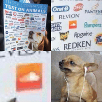 Animals, Dove, and Rogaine: IH  TEST ON  PURINA ALMAY  ESE COMPANIES  ANIMALS OralB OFF!  PANTENE  ACUVUE Aveeno  WCK AXE AVO N  REVLON  Ho  BOSS BANDAI llina e ⑤囲eweit ne @  ARMORAL  敶Doury Dove pran NG Crest DIESEL deA  IAMSa Gm asa mungna @RNeR greses e  CLORDS ChapStick COVERGIRI  GLAD  heads  shouldders  Dial Gillette  ARD  Rogaine  REDKEN  MAYBELLINE Old Spice  HIVEA  es PaigSul REVLON  Goat Sives REDEN  TRESemme S lolwtfmemes:Soundcloud is so evil