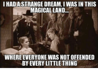 Not Offended: IHADASTRANGE DREAM, I WASIN THIS  MAGICAL LAND  WHERE EVERYONE WAS NOT OFFENDED  BY EVERY LITTLE THING