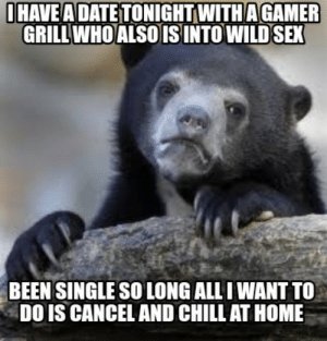 Chill, Funny, and Meme: IHAVEA DATE TONIGHT WITHAGAMER  GRILL WHOALSO IS INTO WILD SEX  BEEN SINGLE SO LONG ALL I WANT TO  DO IS CANCEL AND CHILL AT HOME Meme Creator - Funny I have a date tonight with a gamer grill who ...