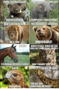 I'm dying: IHAVETHE NECESSARY  YOUR KOALAFICATIONS ARE  KOALAFICATIONS  COMPLETELY IRRELEPHANT  DON'T LISTEN TO HIME  THIS ARGUING IS BECOMING  UNBEARABLE!  HES LION  INDEED  HORSE PLEASE WHEN DO YOU  EVER SAY SOMETHING SMART  ITS MAKING MY VOICE HORSE  DONT WORRY OWL WAI  OUCH  I'M OUT OF HERE!  YOU ALL ARE  GIRAFFING ME CRAZY  HAWKWARD I'm dying