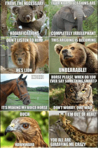 I'm dying 😂😂: IHAVETHE NECESSARY  YOUR KOALAFICATIONS ARE  KOALAFICATIONS  COMPLETELY IRRELEPHANTS  DON'T LISTEN TO HIMI  THIS ARGUING IS BECOMING  UNBEARABLE!  HES LION  INDEED  HORSE PLEASE WHEN DO YOU  EVER SAY SOMETHING SMART  ITS MAKING MY VOICE HORSE  DONT WORRY, OWL WAI  OUCH  I'M OUT OF HERE!  YOU ALL ARE  GIRAFFING ME CRAZY  HAWKWARD I'm dying 😂😂