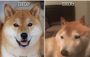 Ihop, Lol, and This: IHOP  IHOb I am certain this a repost but LOL