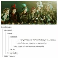 21 Funny Harry Potter Tumblr Posts To Make You Feel Better: IK  dramallamapie  rahmagical  mmrnd  tsukikipin  Harry Potter and the Year Nobody Got A Haircut.  Harry Potter and the goblet of flowing locks  Harry Potter and the Half-Priced Extensions  DEAD  So was Cedric  361 873% done 21 Funny Harry Potter Tumblr Posts To Make You Feel Better