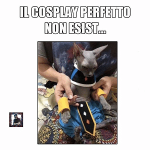 Memes, Cosplay, and 🤖: IL COSPLAY PERFETTO Ah okey .