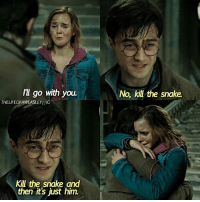 - Date: 04-08-17 --- This scene is so cute --- Q- harmione or romione? --- HarryPotter TheDeathlyHallows: Il go with you  No, kill the snake  THELIFEOFAWEASLEY!JIG  Kill the snake and  then it's just him. - Date: 04-08-17 --- This scene is so cute --- Q- harmione or romione? --- HarryPotter TheDeathlyHallows