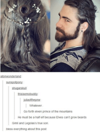 Elven: Ilana  sunspotpon  Shugarskull  thisisemobuddy  juliaofthepnw  Whatever  Go forth elven prince of the mountains  He must be a half elf because Elves can't grow beards  Gimli and Legolas's true son.  bless everything about this post