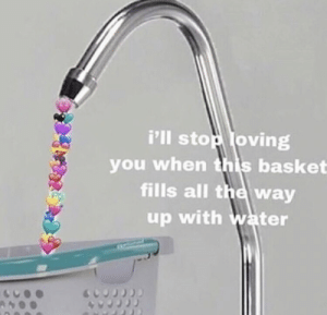 https://t.co/mh03uDqZ9b: i'lI stop loving  you when this basket  fills all the way  up with water https://t.co/mh03uDqZ9b
