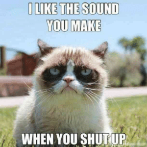 "Memes, Shut Up, and Sound: ILIKE THE SOUND  YOU MAKE  WHEN YOU SHUTUP ""I like the sound you make when you shut up.""  #grumpycatmemes #ripgrumpycat #memes"