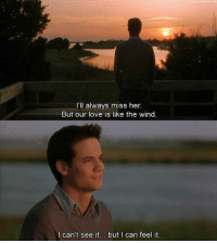 Memes, 🤖, and A Walk to Remember: I'll always miss her.  But our love is like the wind  I can't see it... but I can feel it A Walk to Remember