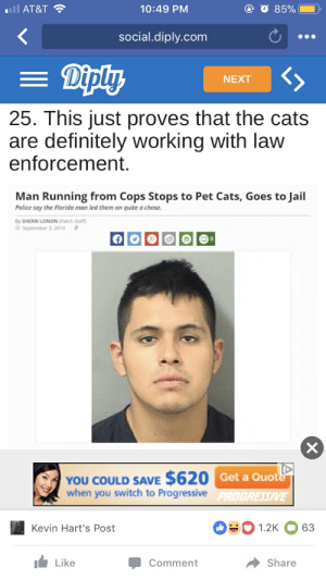 Cats, Definitely, and Florida Man: Ill AT&T  10:49 PM  social.diply.com  NEXT  25. This just proves that the cats  are definitely working with law  enforcement.  Man Running from Cops Stops to Pet Cats, Goes to Jail  Police say the Florida man led them on quite a chase  By SHERRI LONON (Patch Staff  О September 2014 р  YOU COULD SAVE $620 Get a Quot  when you switch to Progressive  1.2K 63  Kevin Hart's Post  Like  Share  Comment